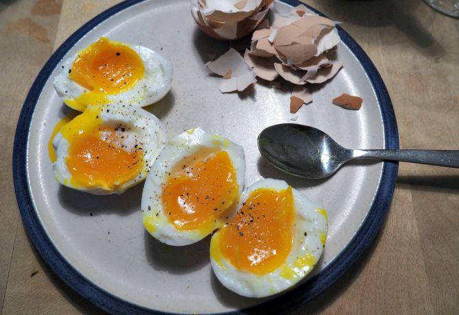 Backyard Chicken Eggs