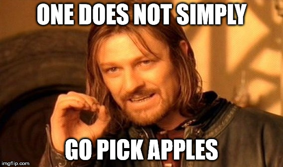 One Does Not Simply Go Pick Apples