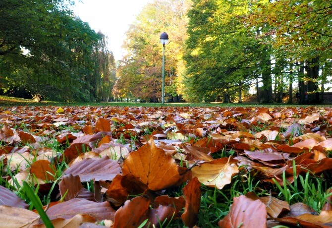 Autumn in Germany